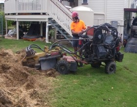 stump grinding brisbane north